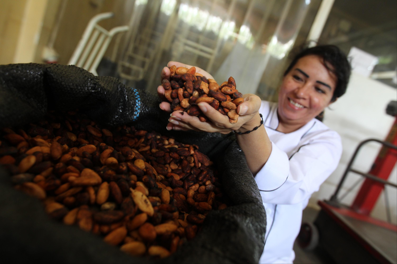 Un buen chocolate debe tener entre 55% y 70% de cacao en su composición. (Foto: GEC)