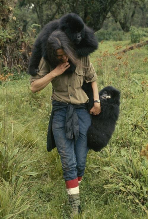 Hasta la fecha, el asesinato de Dian no ha sido resuelto. (Foto: National Geographic)