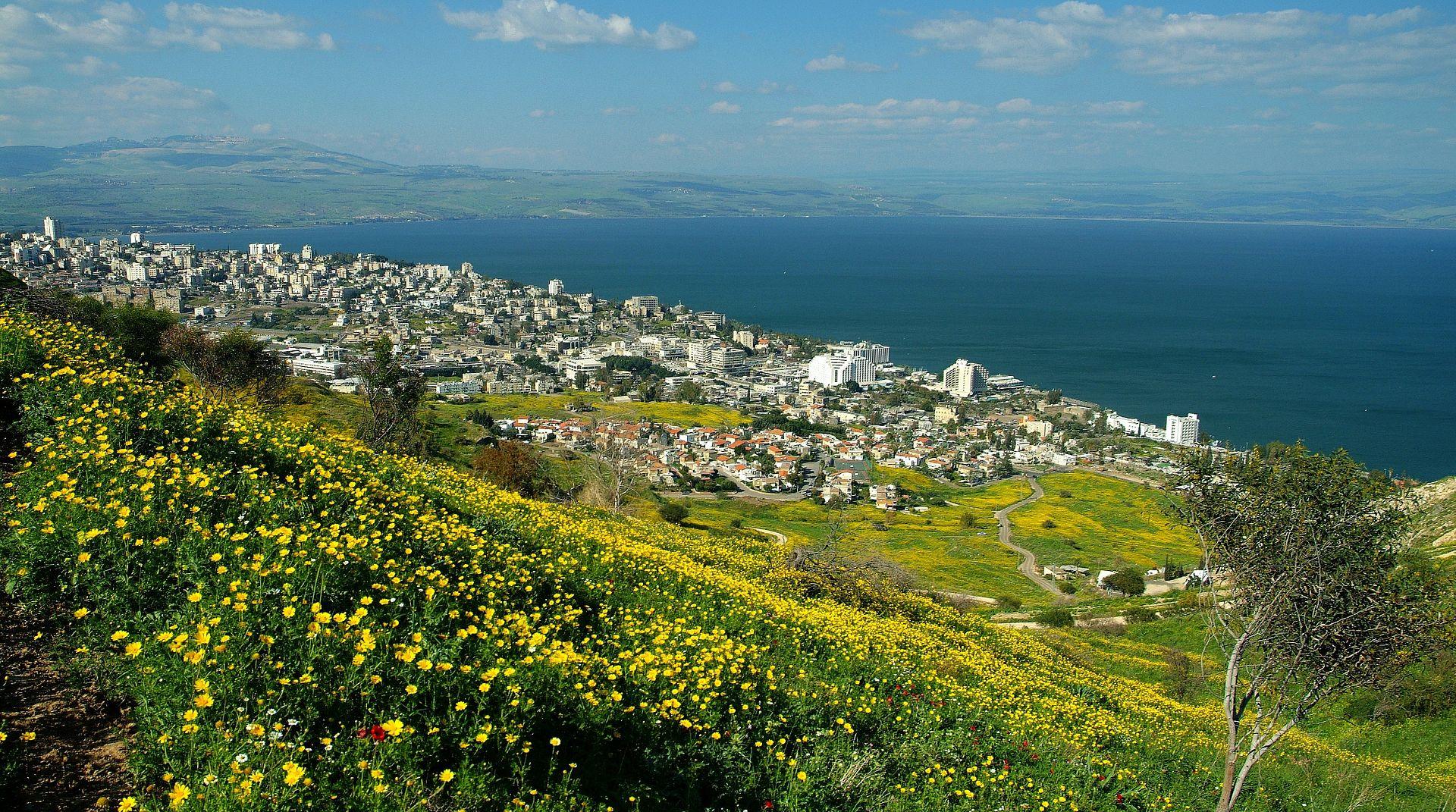 Algo desconocido, pero Israel también destaca por la producción de un delicioso vino. (Foto: Difusión)