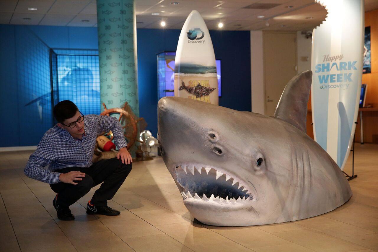 También podrás encontrar algunas utilerías usadas en distintas películas. En la foto, una exposición de la película Tiburón. (Foto: Facebook The Paley Center for Media)