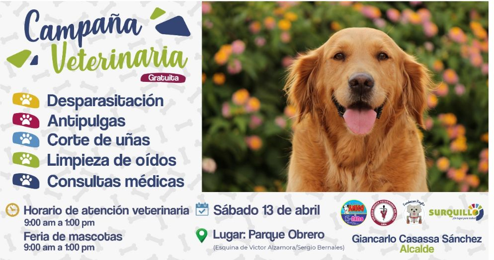 (Foto: Municipalidad de Surquillo/Fundación Rayito)