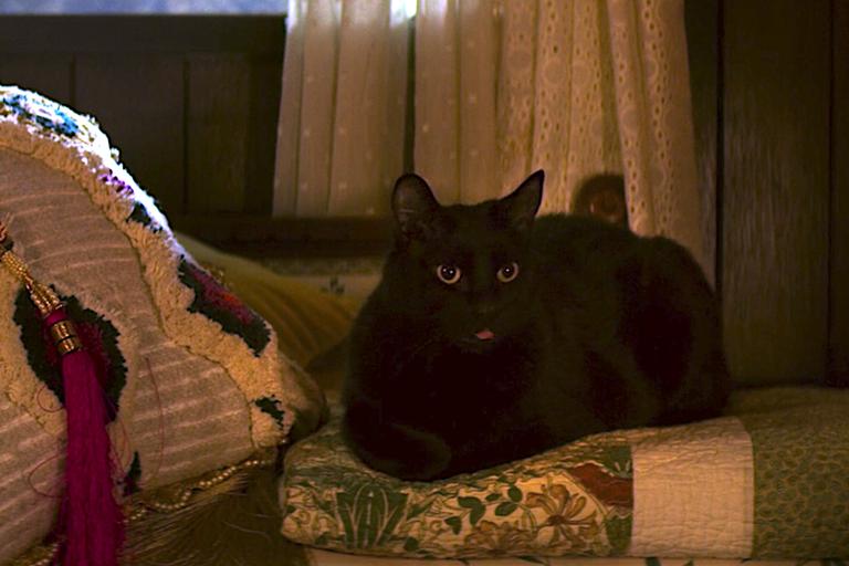 ¿Por qué Salem ya no aparece tanto en el show? (Foto: Netflix)