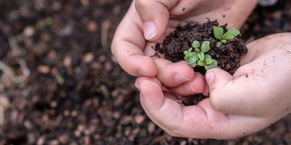Las nuevas generaciones están empeñándose en cuidar el planeta. (Foto: Pixabay)