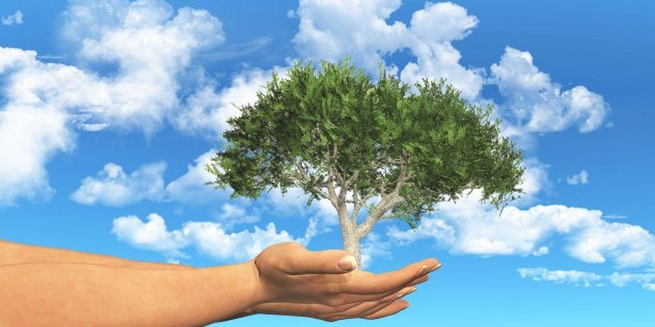 Ahora las universidades ofrecen carreras relacionadas al cuidado del medio ambiente. (Foto: Freepik)