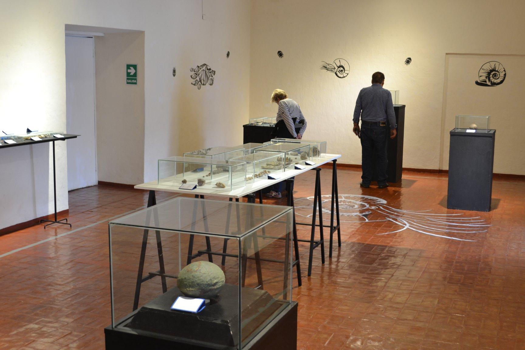 Piezas paleontológicas se exponen en el primer piso de este bonito museo. (Foto: Facebook Museo Histórico Regional Casa del Inca Garcilaso de la Vega)