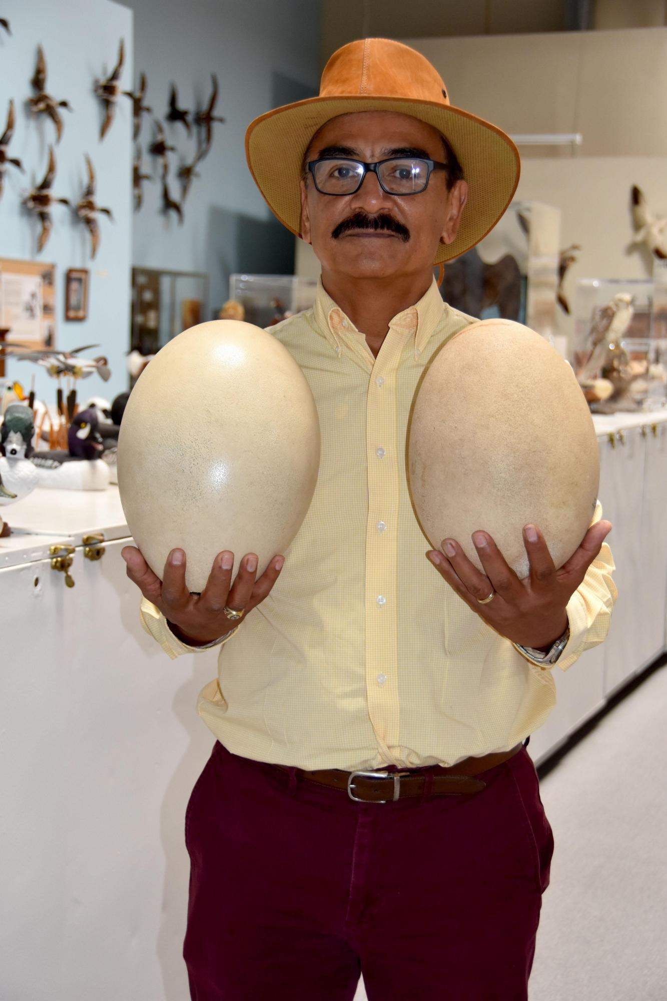 Corado es gerente de la colección de huevos de aves más grande del mundo. (EFE)