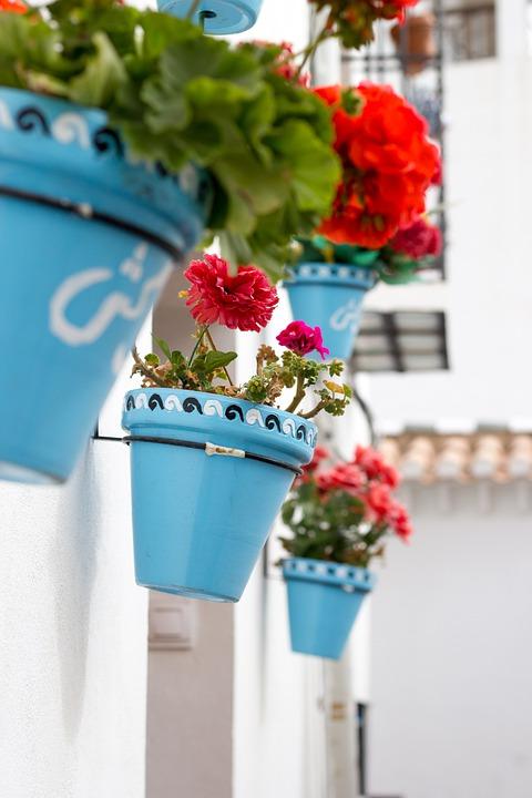 Las macetas con geranios son perfectas para ponerlas en interiores o exteriores. (Foto: Pixabay)