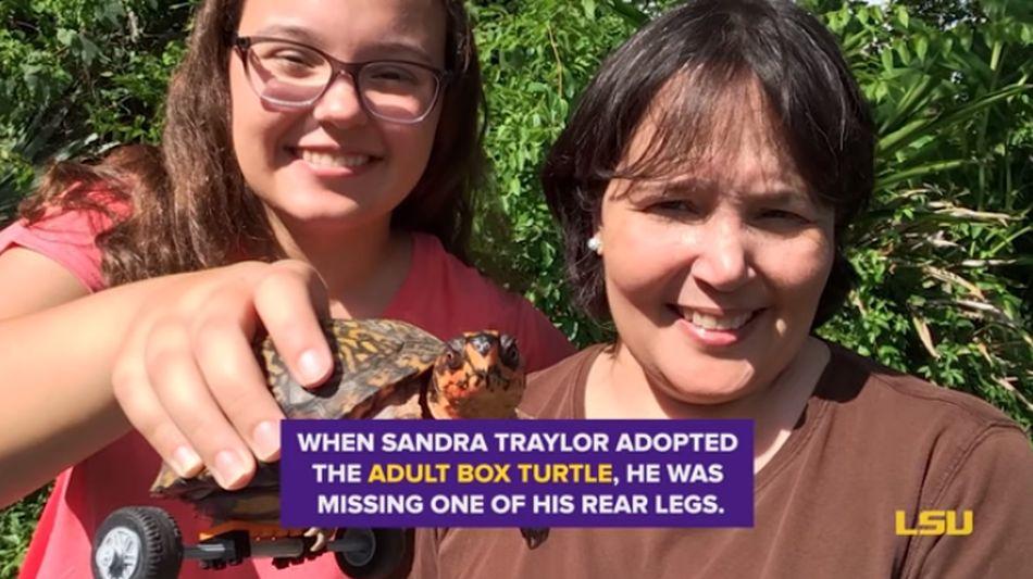 Pedro ahora tiene una vida aún más feliz junto a su familia adoptiva. (Foto: captura YouTube)