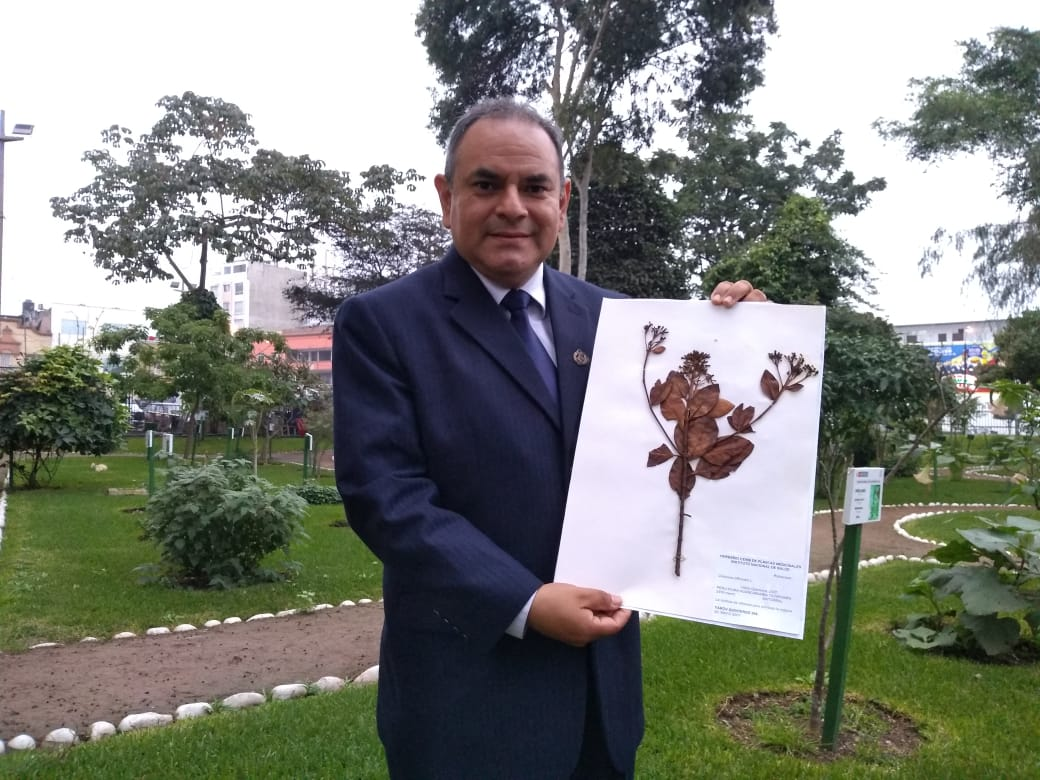 El biólogo del INC, Jorge Cabrera, es uno de los estudiosos de esta especie vegetal. (Foto: Kenyi Coba)