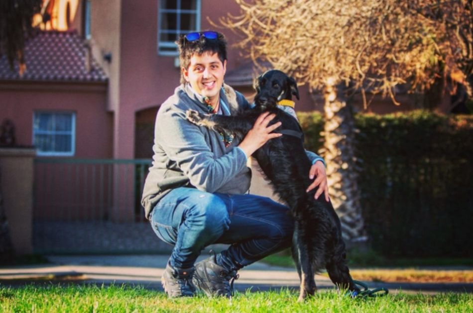 El joven de 25 años ha rescatado casi 600 perros en Chile en menos de una década. (Foto: Facebook Adopciones David Fernández)