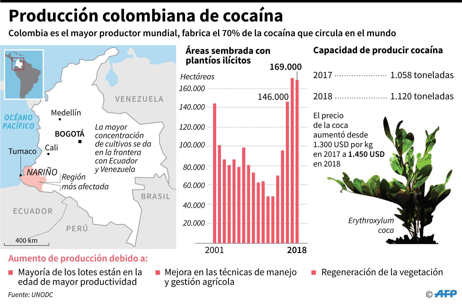Colombia es el mayor productor de droga en el mundo. (Infografía: AFP)
