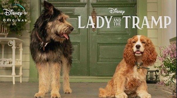 Disney presentó a los protagonistas de la versión live action del filme.