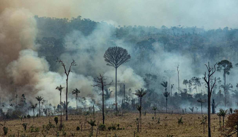 Foto publicada por Greenpeace muestra humo saliendo del Bosque Nacional Jamanxim en el bioma amazónico en Estado de Pará en momentos que cientos de nuevos incendios se estaban desatando hace menos de una semana. (Foto: AFP)