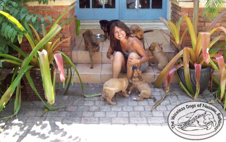 """Chella Phillips dirige la protectora 'Los perros sin voz de Nasáu'. (Facebook)<br /> """" title=""""Chella Phillips dirige la protectora 'Los perros sin voz de Nasáu'. (Facebook)<br /> """"></div>     <figcaption class="""