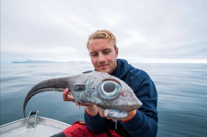 Pescan un pez de aspecto prehistórico en Noruega. (Foto: Bournemouth News)