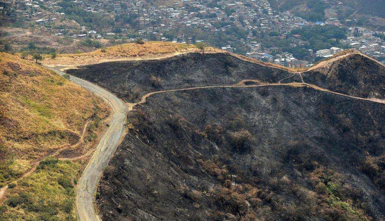Vista aérea de un área quemada por un incendio forestal el 13 de setiembre pasado en Cali. (AFP)