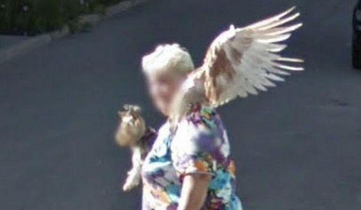 Si uno se fija bien, lo que son alas es una paloma encima del hombro de la señora.