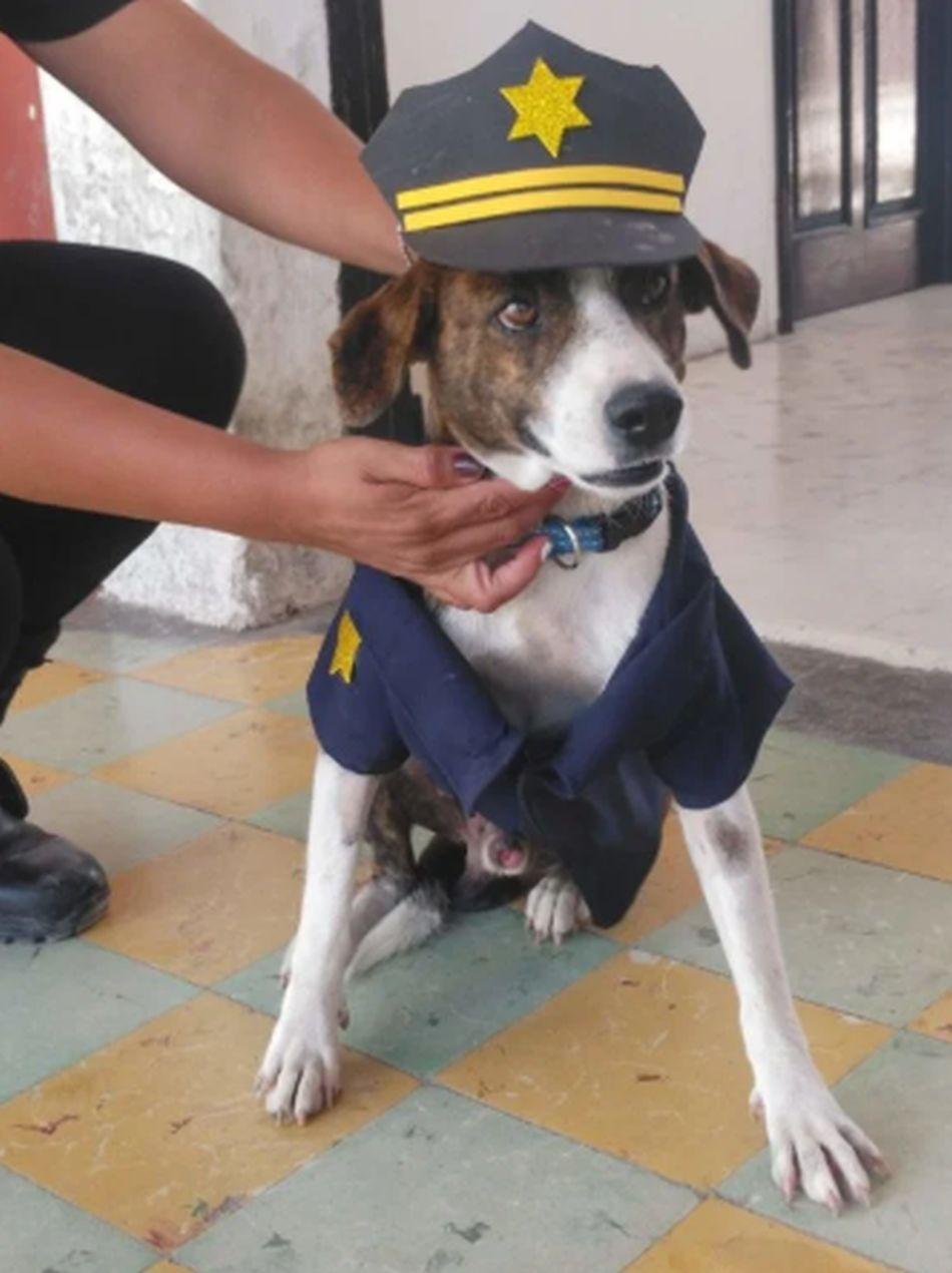 'Chilaquil' lleva con mucho orgullo el uniforme policial. (Foto: captura YouTube)