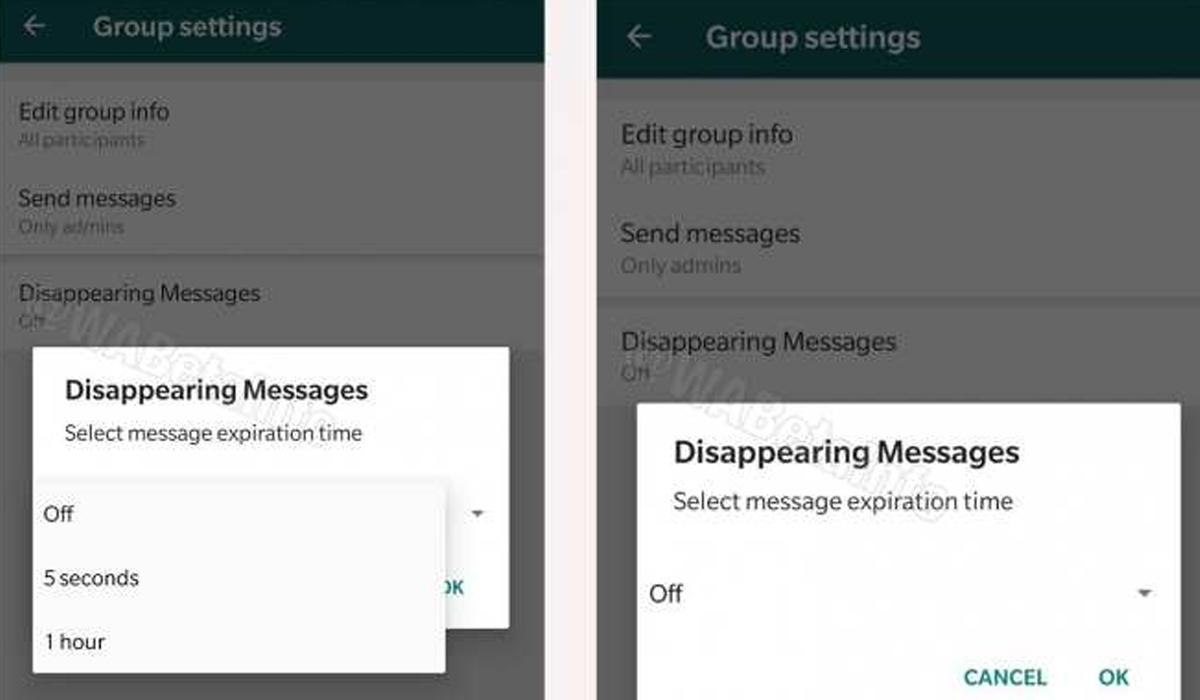 Así es como puedes activar los chats que se autodestruyen. (Foto: WABeta Info)