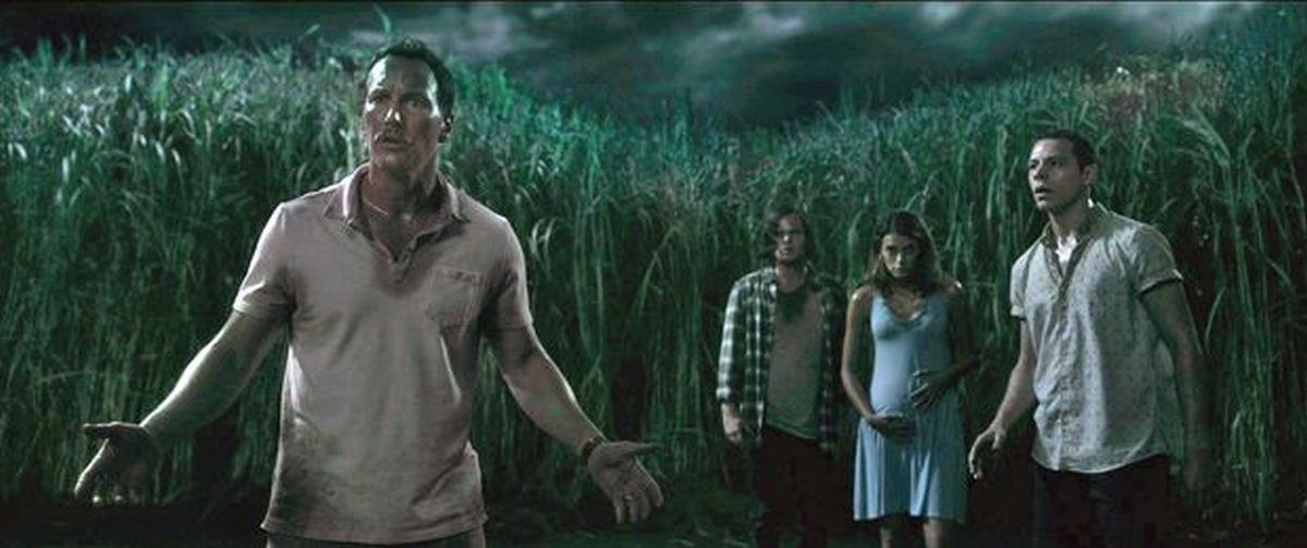 In the Tall Grass es una película de terror que sigue a dos hermanos que, guiados por un grito de ayuda se internan en un campo de hierba alta en Kansas, pero no logran dar con la salida. (Foto: Netflix)
