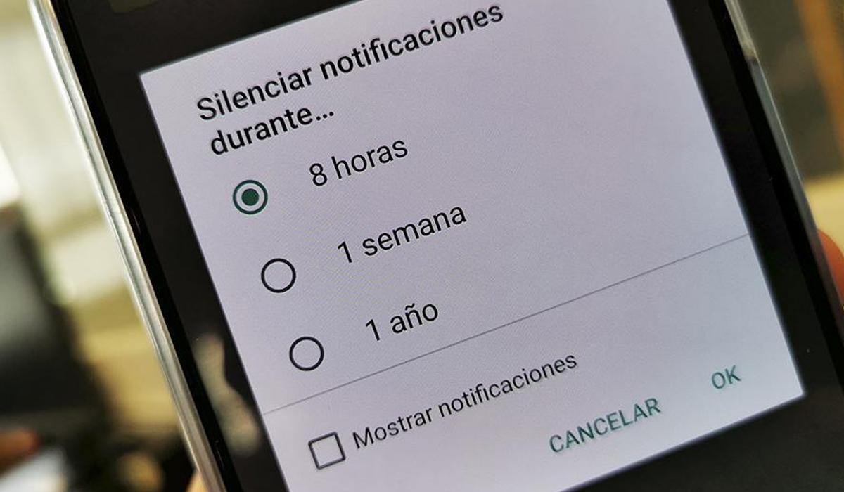 Una de las herramientas es poder silenciar al usuario y evitar recibir notificaciones. De esa forma nunca más te llegarán mensajes sin bloquearlo. (Foto: WhatsApp)